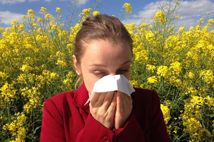 alergias primaverales, Alergia, primaveral, ¿Qué es la Alergia primaveral?, Causas de alergia primaveral, causas alergias primaverales, síntomas de alergia primaveral, síntomas alergias primaverales, tratamiento alergia primaveral, tratamiento alergias primaverales, polinosis, fiebre del heno, ¿Qué es la polinosis?, ¿Qué es la alergia al polen?, alergia al polen, Fiebre del Heno, ¿Qué es la Rinitis alérgica estacional?, Tipos de Polen que provocan Alergias Primaverales, Tipos de polen que producen Alergias primaverales, Síntomas de la Alergia primaveral, Tratamiento de la alergia primaveral, tratamiento de las alergias primaverales, síntomas de las alergias primaverales, Consejos para evitar la exposición al polen y mejorar los síntomas de la Alergia Primaveral,