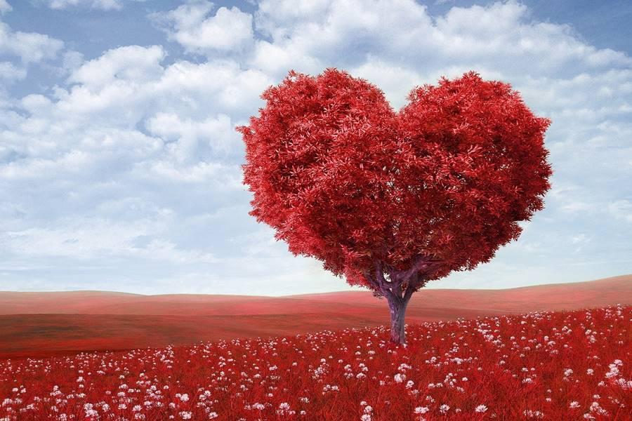 Qué es el Bloqueo de Rama Izquierda del Corazón, ¿A quién afecta el Bloqueo de Rama Izquierda?, Causas del Bloqueo de Rama Izquierda del Corazón, Tipos de Bloqueo de Rama Izquierda del Haz de His, Síntomas del Bloqueo de Rama Izquierda del haz de His, Diagnóstico del Bloqueo de Rama Izquierda del Corazón, Tratamiento del Bloqueo de Rama Izquierda del Corazón, Pronóstico del Bloqueo de Rama Izquierda, Complicaciones del Bloqueo de Rama Izquierda del Haz de His,