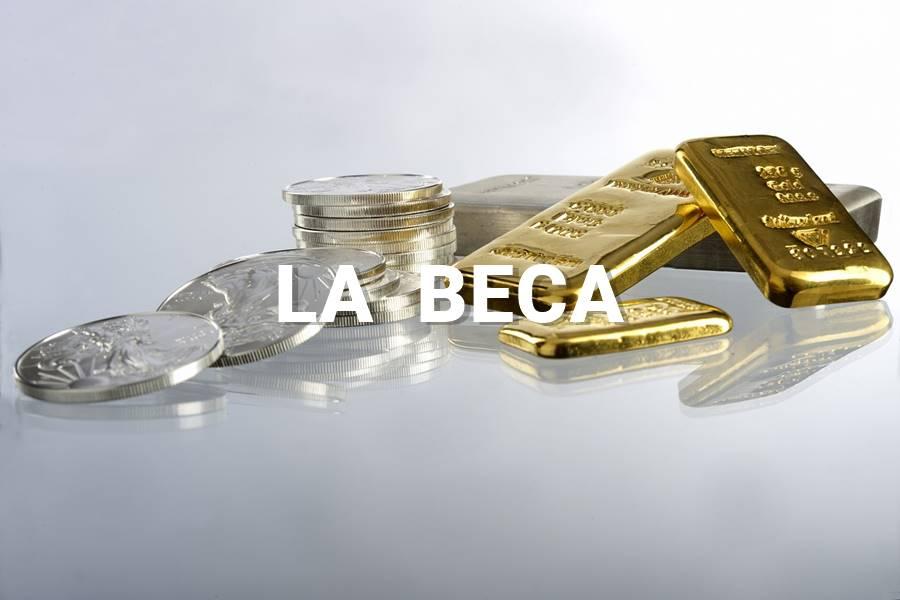 Novela LA VACUNA Capítulo 4 LA BECA, Novela la vacuna,